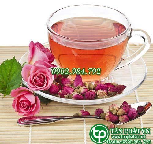 nước trà nụ hồng tấn phát