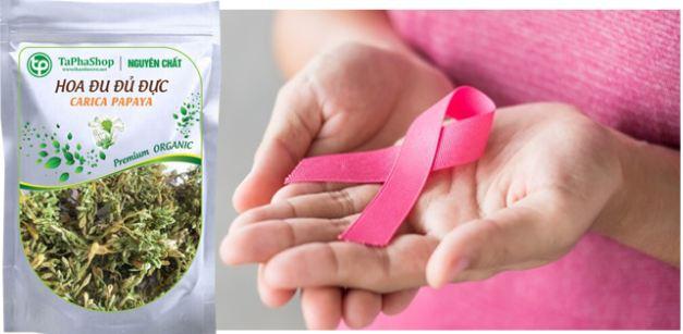 hoa đu đủ đực giúp hỗ trợ điều trị ung thư